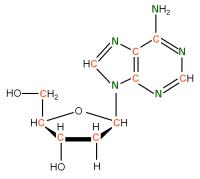 13C 15N  Deoxyriboadenosine powder