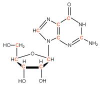 13C Riboguanosine