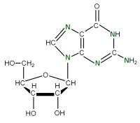 15N Riboguanosine