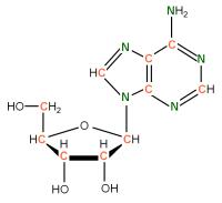 13C15N Riboadenosine