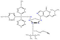 2H-labelled dG  Phosphoramidite  (uniformly labelled)