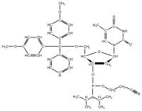 13C6 Thymidine  Phosphoramidite powder