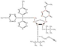 U-13C Cytidine  Phosphoramidite powder