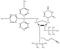U-13C Uridine  Phosphoramidite powder