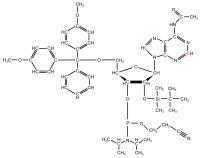 13C2 13C8 Adenosine  Phosphoramidite powder