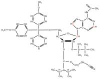 13C2 13C8 13C1' Adenosine  Phosphoramidite powder