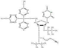 15N1 15N3 Ribouridine  Phosphoramidite