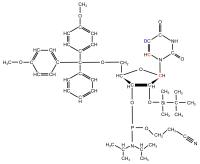 2H5 13C6 13C1' Uridine  Phosphoramidite powder