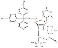 U-13C U-15N Uridine  Phosphoramidite powder