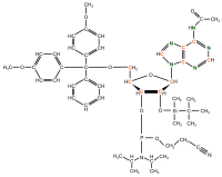 13C 15N Riboadenosine  Phosphoramidite