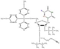 15N1 15N3 2H5 13C6  Ribouridine Phosphoramidite  powder