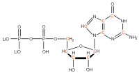 13C Guanosine 5'- diphosphate lithium salt  solution