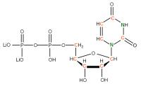 13C 15N Uridine 5'- diphosphate lithium salt  solution