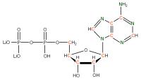 13C 15N Adenosine 5'- diphosphate lithium salt  solution