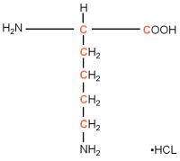 13C L-Lysine hydrochloride  powder