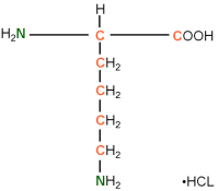 13C15N-labelled L-Lysine  HCl