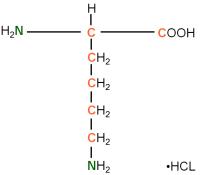 13C 15N L-Lysine  hydrochloride powder