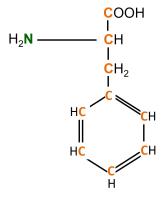 13C 15N L-Phenylalanine  powder