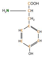 13C 15N L-Tyrosine powder