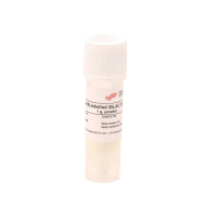 Lysine(6)-labelled SILAC Fly  Diet, powder