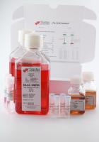 SILAC DMEM Lysine(6) Kit