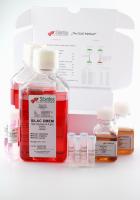 SILAC DMEM Lysine(8)  Arginine(6)  Kit