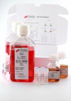 SILAC DMEM Lysine(8)  Arginine(10)  Kit